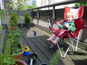 Alexander relaxes on the deck