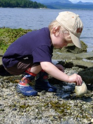 Discovering stuff on the beach at Thetis Island